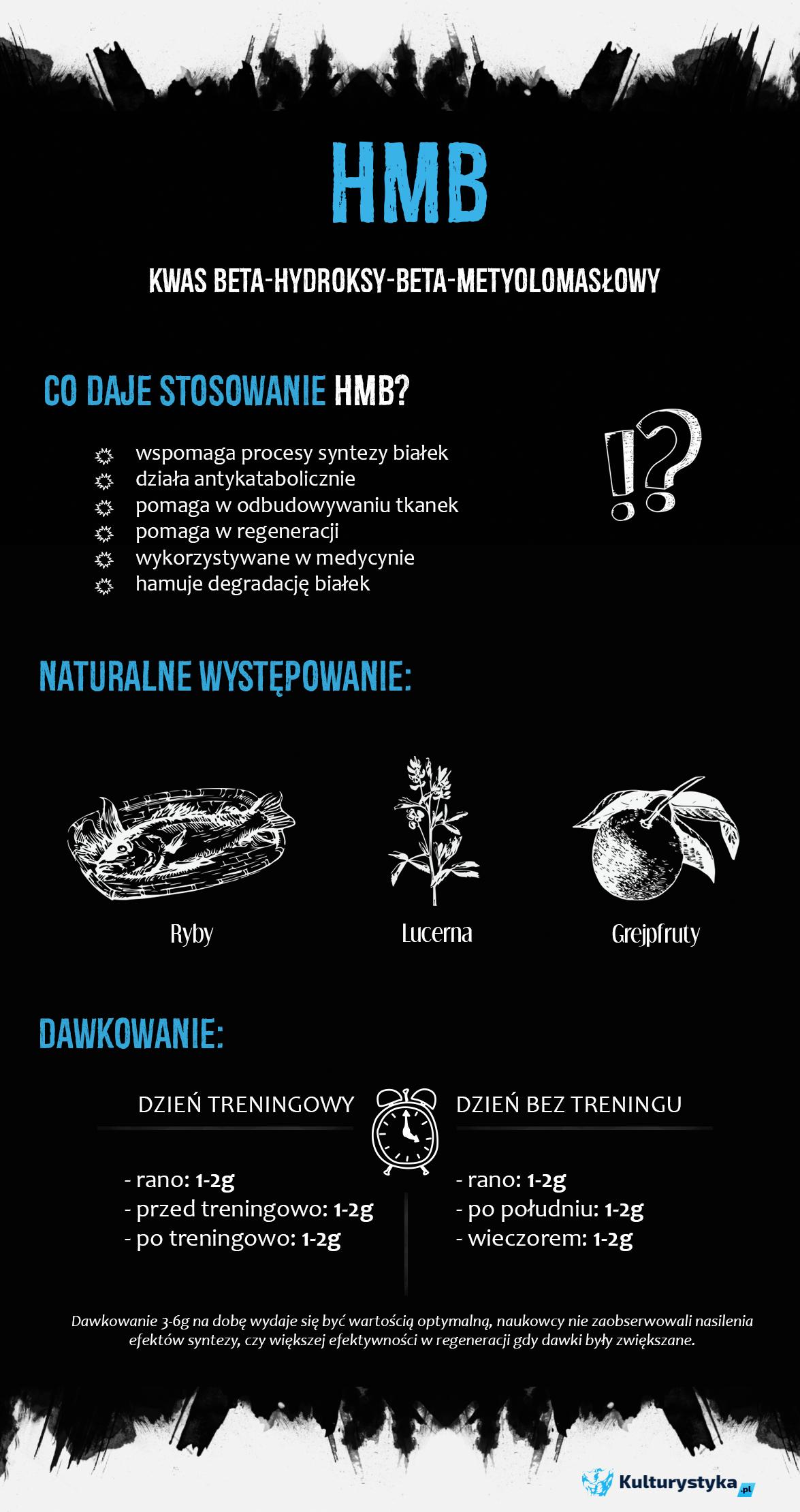 infogrfka hmb