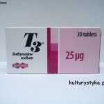 Liothyronin (T3) – wszystko co powinieneś wiedzieć (art by -Neal-)