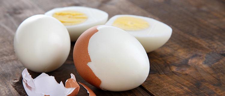 bialko-z-jajka