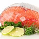 Ryby – podstawowe informacje