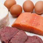 Zapotrzebowanie na białko – najnowsze badania!!