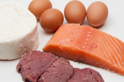 Źródła białka