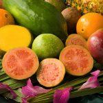 Zawartość przeciwutleniaczy w produktach żywnościowych