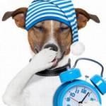 Cynk, magnez i melatonina poprawiają jakość snu