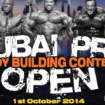 Dubai Pro 2014