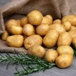 Dlaczego ziemniaki są lepsze niż zwykło się uważać?
