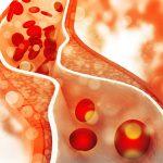 Kreatyna wspomaga elastyczność tętnic. Badania naukowe