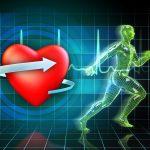 Czy trening HIIT jest silnym stresem dla organizmu?