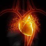 Czy sterydy są niebezpieczne dla serca? Doping a serce