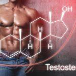 Testosteron i nandrolone niszczą serce?